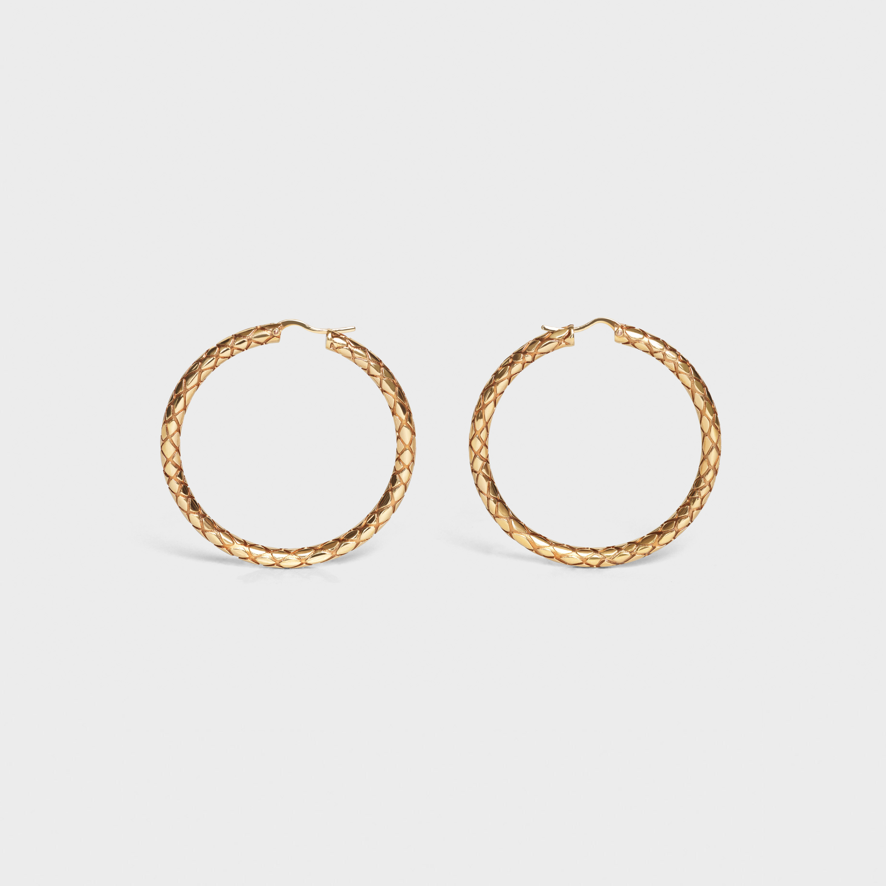 Celine Animals Bold Hoops in Brass with Vintage Gold finish | CELINE